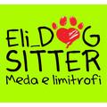 Eli dogsitter Meda